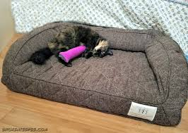 Cats In Dog Beds Comfortable Pet Beds For Cats And Dogs From Brentwood Home