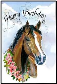 Horse Birthday Meme - 16 best horse birthday wishes images on pinterest