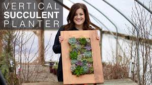 How To Make A Succulent Wall Garden by Vertical Succulent Planter Full Version Youtube