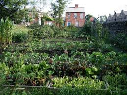 fruit and vegetables combination in home garden 4 home ideas