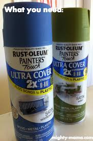 Home Depot Plastic Planters by Paint A Plastic Flower Pot Use Rust Oleum Satin Spray Paint From