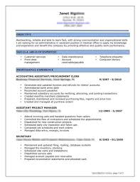 Procurement Resume Samples by Resume Example For It Professional Sample It Resume Example