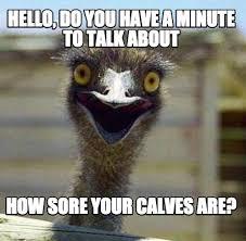 Ostrich Meme - meme maker inappropriately optimistic ostrich generator