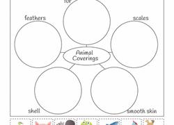 1st grade science worksheets u0026 free printables education com