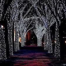 best 25 lights in trees ideas on lights in garden