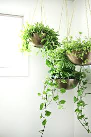 wall ideas wall hanging planters outside wall hanging planters