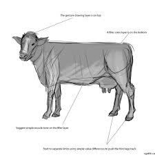 how to draw a cow a guide on sketching out realistic cow drawings