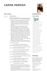 Marketing Resume Sample by Vp Marketing Resume Samples Visualcv Resume Samples Database