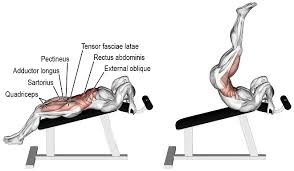 Bench Abs Workout A Killer Lower Abs Workout For 8 Pack Abs Gym Workout Chart
