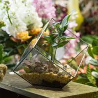 Cheap Small Flower Pots - cheap small glass flower pots free shipping small glass flower