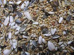 weed seeds a well balanced mixtures of cultivated weed seeds