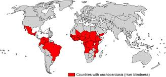 Illnesses That Cause Blindness Who Onchocerciasis River Blindness Disease Information