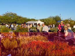 Scottsdale Az Botanical Gardens by Scottsdale Daily Photo Photo Desert Botanical Garden Plant Sale