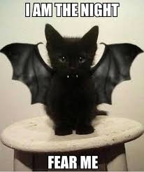 Meme Halloween - funny halloween memes quotes jokes pictures scary halloween