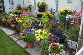 Winter Container Garden Ideas Fall Outdoor Container Gardening Best Container Gardening Ideas