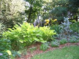 Flower Bed Plan - 2862 best flower gardening images on pinterest flower gardening