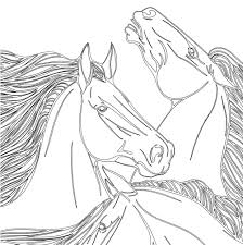 vive le color horses coloring book color in de stress