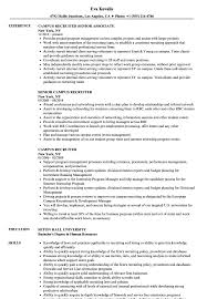 recruiter resume exles cus recruiter resume sles velvet