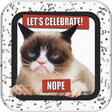 grumpy cat wrapping paper grumpy cat dinner plates pack of 8 grumpy cat party supplies