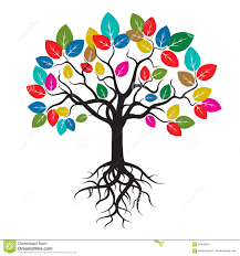 tree with color leafs and roots stock illustration illustration