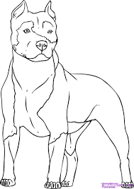 28 pit bull coloring pages free coloring pages of pitbull a