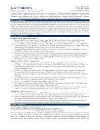 fascinating portfolio manager resume pdf in mercial real estate