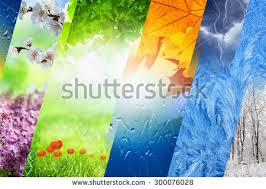 season stock images royalty free images vectors