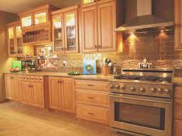 high end kitchen cabinet companies monsterlune