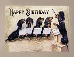 dog dachshund birthday card yesterday u0027s best