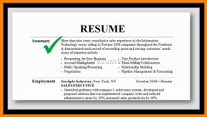 What Is Resume Synopsis Resume Synopsis Examples Eliolera Com