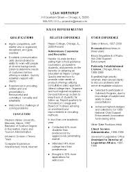 Resume Examples Qualifications by Representative Resume Example