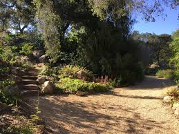 Slo Botanical Garden by Stoker Engage Most Excellent Adventures