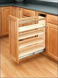 kitchen cabinets with pull out shelves u2013 petersonfs me