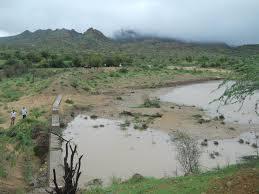 thar desert capturing rain where it falls building sand dams across dry river