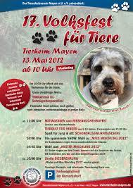 Tierheim Bad Salzuflen Hunde Kaninchenberatung E V Was Geschah 2009 Bis 2014