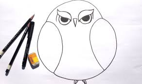 beginner learn to draw grumpy owl for acrylic painting youtube