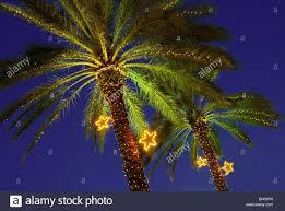 christmas lights in miami stock photos u0026 christmas lights in miami