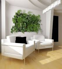 Indoor Vine Plant Grow A Vertical Garden Indoors Living Walls And Vertical Gardens