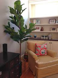 view from my heels faux fiddle leaf fig