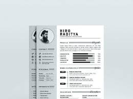 fancy resume templates free fancy resume templates it professional template creative format