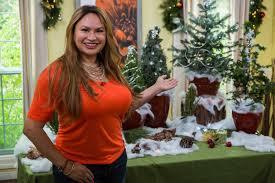 do it yourself christmas trees home u0026 family video hallmark