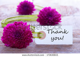 thank you flowers thank you flowers stock images royalty free images vectors