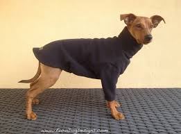 pet sweaters fleece sweaters dress the clothes for your pets