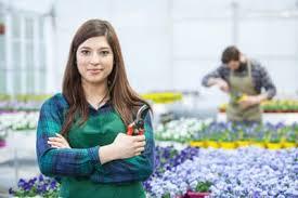 studium garten und landschaftsbau gartenbau im ausland studieren alle infos beratung