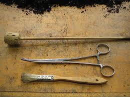 tiny tools for tending indoor gardens gardenista