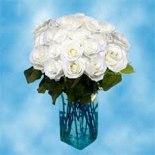 global roses stem white roses wholesale s day flowers global