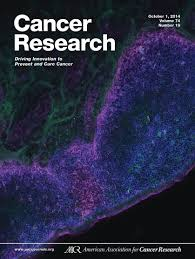 egfr blockade enriches for lung cancer stem u2013like cells through