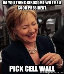 Hillary Clinton Cell Phone Meme - ha you think ribosome will be a good president pick cell wall