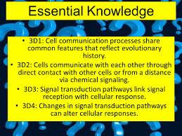 cell communication big idea 3 living systems store retrieve