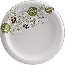 paper plates dixie pathways 8 1 2 heavyweight paper plates 125 pack sxp9path